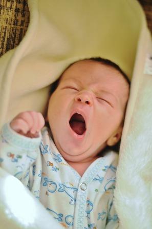 newborn-753819_1280