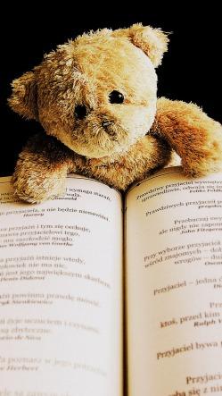 teddy-422370_1280